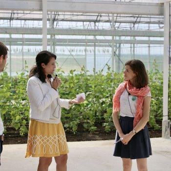 NeoFarm inaugure sa nouvelle ferme technologique pour produire des légumes bio et locaux